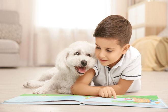 犬に本を読み聞かす子供