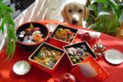 おせち料理と犬
