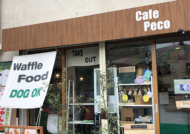 宮前区神木本町「Cafe Peco」ペット店内同伴可のお食事処