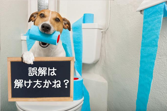 犬 トイレ おしっこ