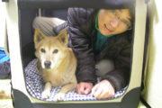 クレートに愛犬と一緒に入る飼い主
