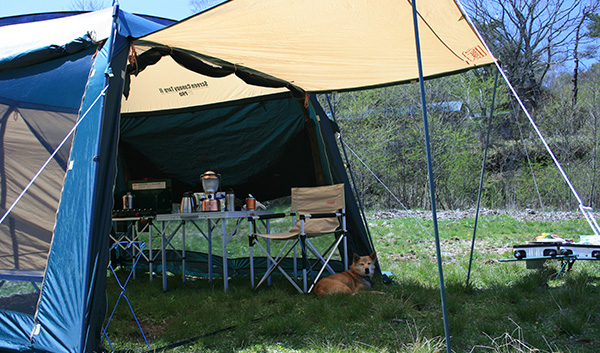 犬連れ旅行やキャンプに慣れているわんこは、ある意味避難訓練としても有意義
