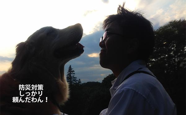 日頃からの犬との信頼関係